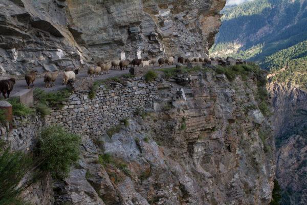Путешествие в долину Спити - Калачакра