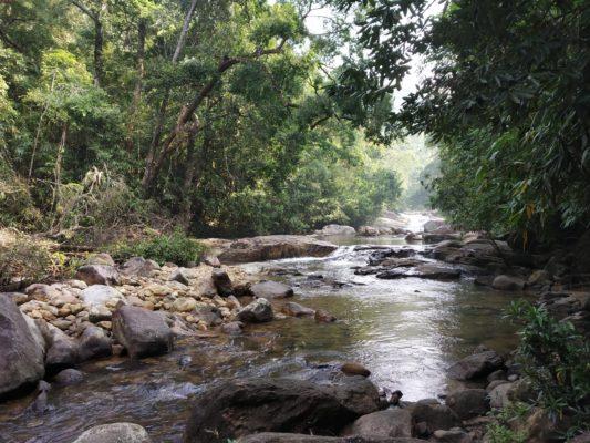 Понмуди - водопады и дикая природа