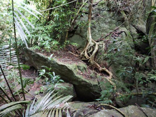 Водопад в Понмуди
