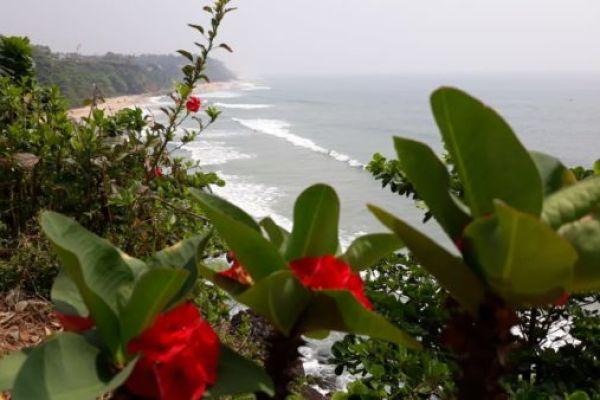 Экскурсия в Варкалу— южная Индия