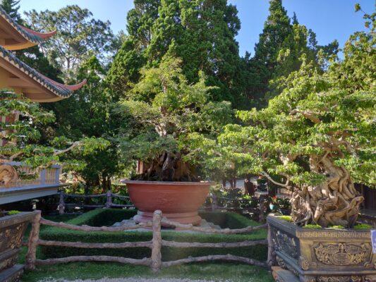 Буддийский комплекс Чук Лам (Thien Vien Truc Lam )